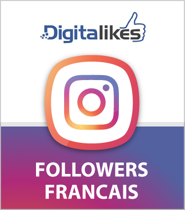 followers_francais_instagram